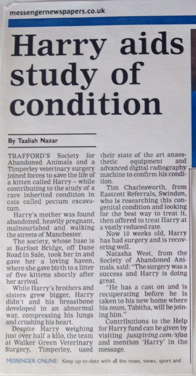 newpaper article on Harry