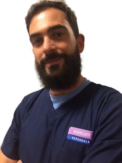 Domenico Sainato referral vet in imaging