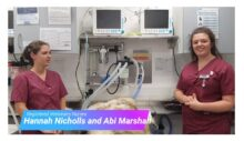 typical daily tasks performed by our surgical nurses